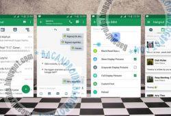 BBM2 Mod Tema Hangout Versi Terbaru 2.10.0.31 Dual Pin