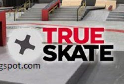 Download True Skate Android