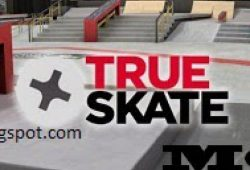 Download True Skate MOD Android